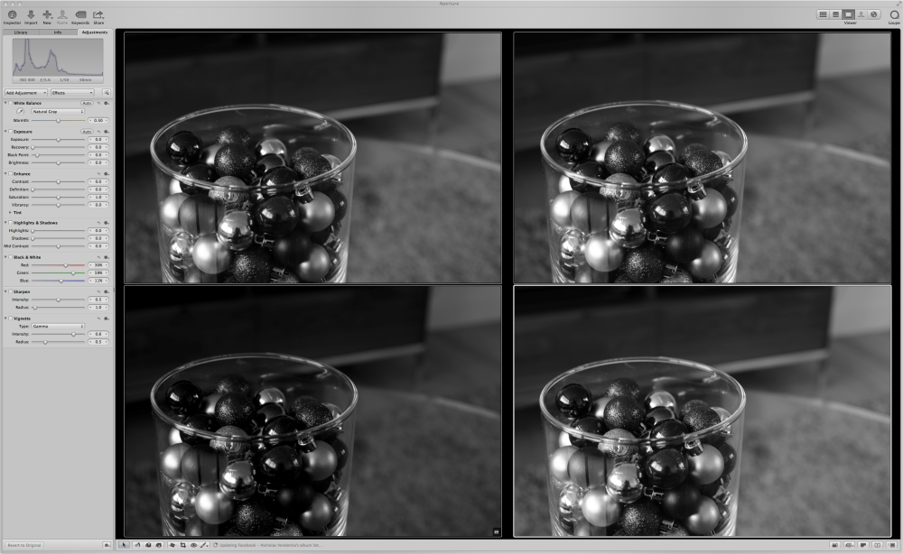 screenshot of Aperture photo layout used to select the best black and white photo
