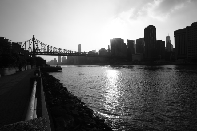 Zeiss 21mm f/2.8 MF: South Roosevelt Island - 120