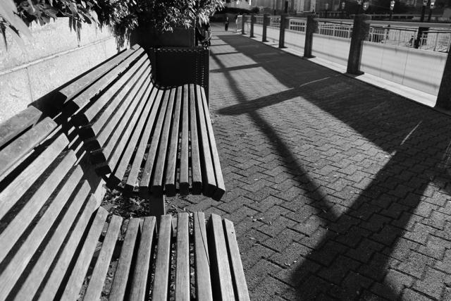 Zeiss 25mm f/2 MF: Evening Sunlight - 75