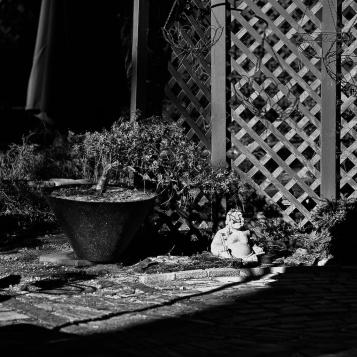 happiness. Zeiss 100mm f-2 MF- Pinehurst Garden - 26. f-2, 1-2000. Silver Efex. © Nicholas Vendemia | Vaperture. 12-26-13