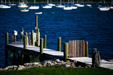 Zeiss 135mm f-2 MF- Fall in New England - 141
