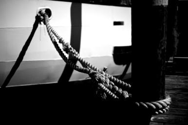 Zeiss 55mm f1.4 Otus- Mystic May 2014. © Nicholas Vendemia | Vaperture. - 052